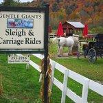 Gentle Giants road sign.