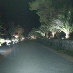 Il corridoio di notte e' stupendo con tutte le luci ottima manutenzione gli operai hanno fatto u