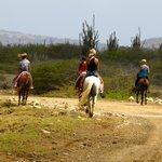 Lac Cai Horse Ranch Bonaire
