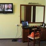 большой плазменный телевизор и подключение к интернету.