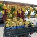 """Estos parecen limones pero es una fruta que se llama """"Cedri"""" ( de la familia !"""