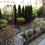 jardin trasero