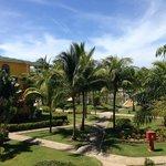 Bujna i zadbana zieleń hotelowa