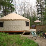 Betty yurt, with our borrowed bicycles and borrowed dog, Tally