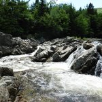 Short hike to North River (lower) falls - ask Angelo for directions