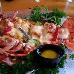 Lobster Savannah - FANTASTIC!!!!!