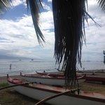 Canoe Tours & SUP hire next door