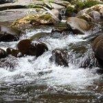 Wonderful cascades
