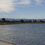 shorelinelake