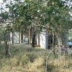 Bedrooms well hidden in the bush