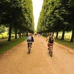 riding through versailles