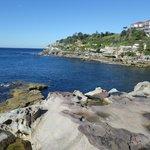 Walk from Bondi beach