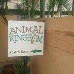 Photo de Animal Kingdom
