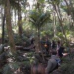 EcoZip - Bush walk back to base