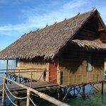 Bungalow Nr. 11 Papua Explorers Raja Ampat