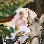 Weddings with Charlie the donkey