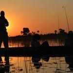 Mokoro boat ride at sunset