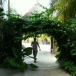 Tropical Mawimbi entrance