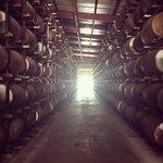 Cruzan Rum Heaven!