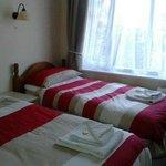 Room 7 twin room