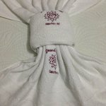 arrumação das toalhas