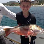Snapper caught bottom fishing