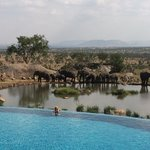 The view from the Four Seasons Safari Lodge pool