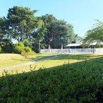 le jardin et la piscine vus de la chambre