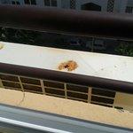 rusty air conditioner