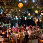 Book your next special event to be held under our Live Oak Canopy