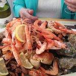 beautiful sea food