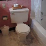 Gross floor stains around toilet