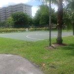 Basketball shuffle board courts