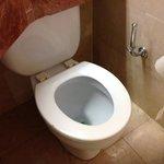 No toilet lid.