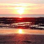 """Vue d """"une grenouille a la plage """". villerville 14113"""