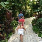 Path through grounds