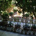Pots of pots