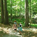 A walk along the gorge trails