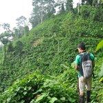 Our guide Rolondo on Bolita trail