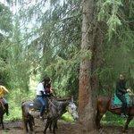 Trip to Kolsai lakes