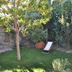 Assos Alarga garden
