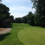#15 from the tee box