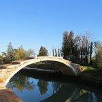 ponte da ilha