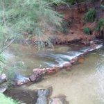 A small creek