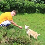 un nino y una cabra
