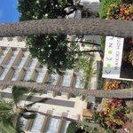 最佳西方威基基椰子酒店