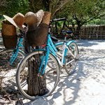 Renting bicycles on Gili Trawangan