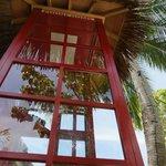 International phone box for free calls