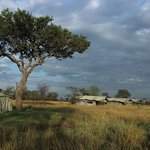 Tents at Ndutu