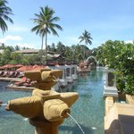 View of the gorgeous pool area